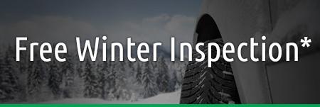 offer-winter-inspection